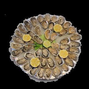 plateau dégustation d'huîtres