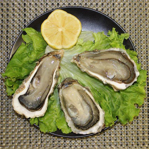 Huîtres fines BIO n°3 de Bretagne, Le Parc à Huîtres, Auch